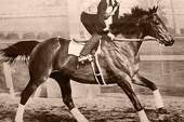 723px-Seabiscuit_workout_with_GW_up