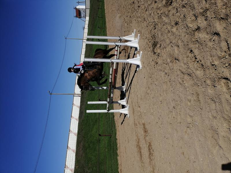 IMG_20200920_142212_001_COVER