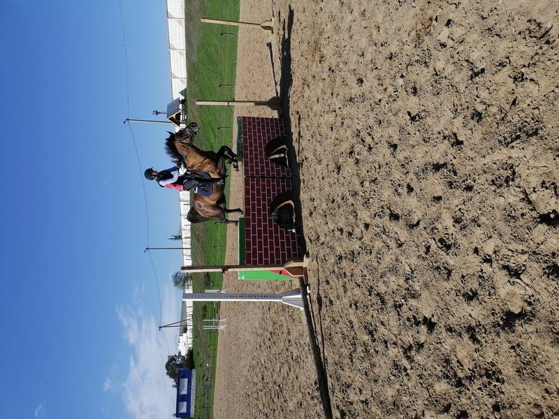 IMG_20200920_142420_001_COVER